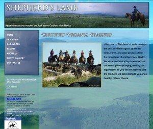 Affordable web design Albuquerque